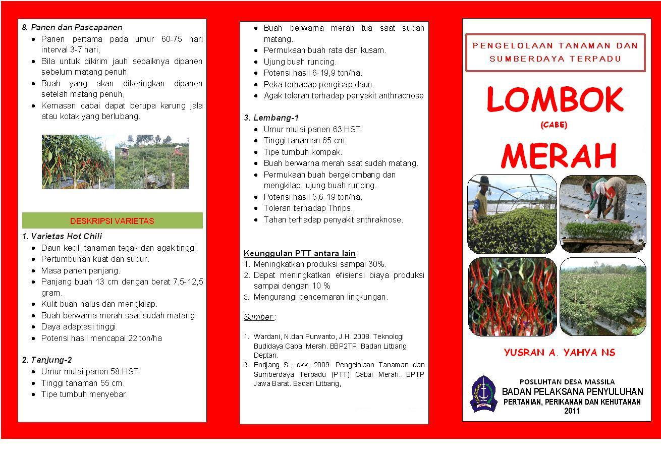 Leaflet Budidaya Cabe Merah Center B Diorama Penyuluhan Dan