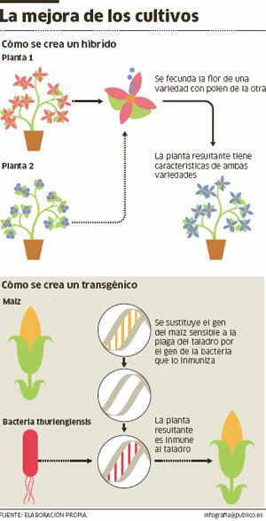 MEJORAMIENTO GENETICO DE CULTIVOS EBOOK DOWNLOAD