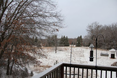 March snow shower powders fields
