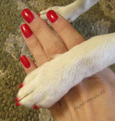 the polished medic ardene red sapphire and guest nails