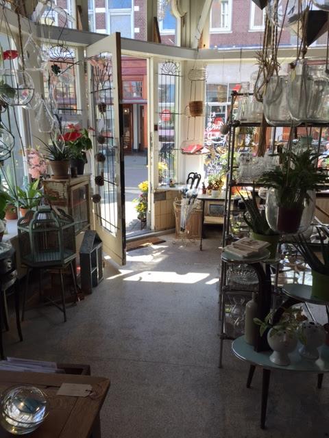 Studio Mojo, Wauw, Shoppen in Den Haag, Piet Heinstraat, Zeehelden, Den Haag, Gewinkeld in Den Haag, planten en bloemen