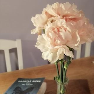 goździki, kwiaty zimą, poczuć wiosnę