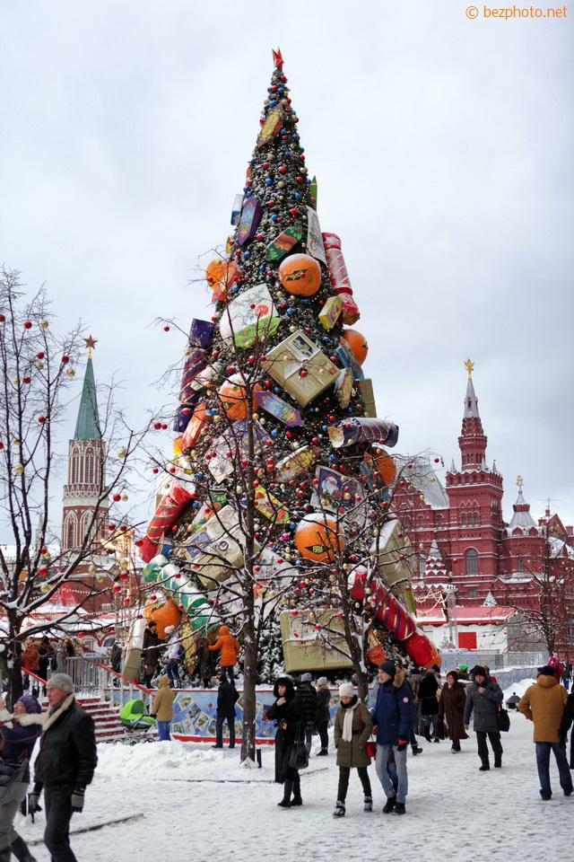 новогодние елки 2016