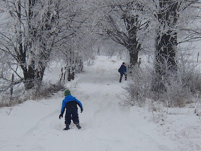 Muszyna,  Jaworzyna Krynicka wejście na Jaworzynę, zimowy szlak na Jaworzynę