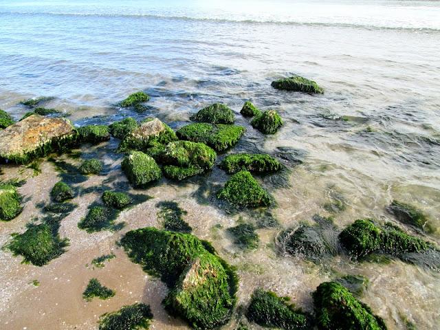 Playa de la Patacona, marzo 2014 - Paseos Fotográficos Valencia