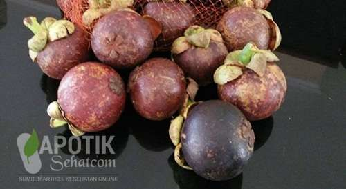 Kulit Manggis Obat Sariawan Tradisional Alami