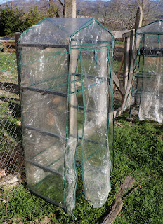 The old greenhouses up and strapped down