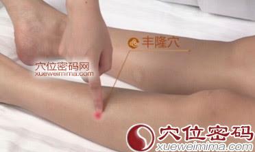 豐隆穴位 | 豐隆穴痛位置 - 穴道按摩經絡圖解 | Source:xueweitu.iiyun.com