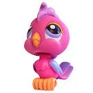 Littlest Pet Shop Small Playset Cockatoo (#372) Pet