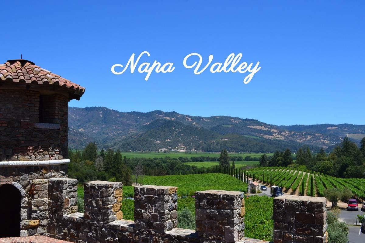 Vignoble Napa Valley
