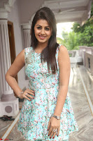 Nikki Galrani at Prema leela pelli gola trailer Launch ~  Exclusive 083.JPG