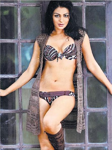 Hot Wallpaper Girls Neeru Bajwa Hot Hot Actress -2453
