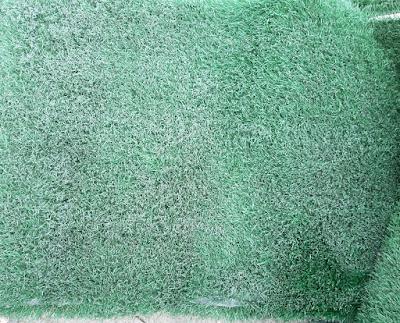 Hoa Phat co nhan tao cho thay thiet ke xanh dep