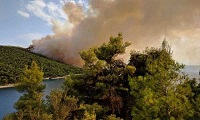 Μεγάλη πυρκαγιά καίει πεύκα στον Αμάραντο Σκοπέλου