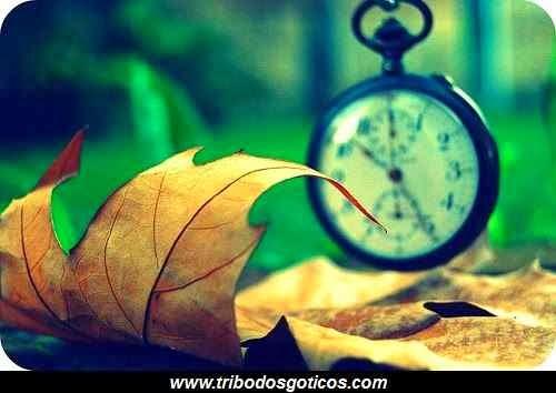 relogio tempo folha seca