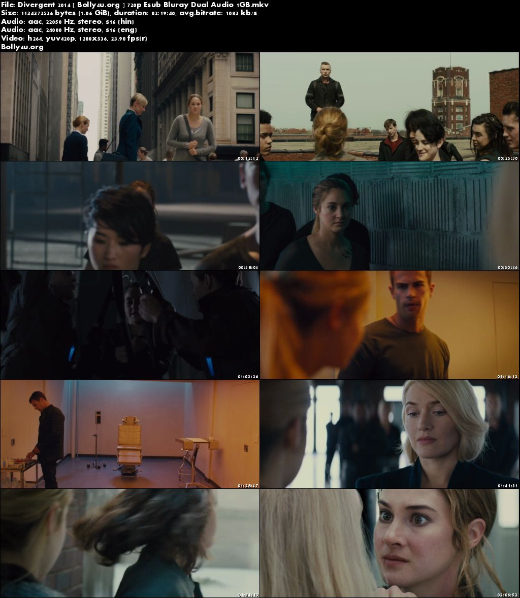 Divergent 2014 BRRip 1Gb Hindi Dubbed Dual Audio 720p Download