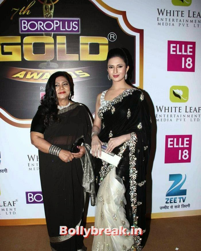 Divyanka Tripathi, Popular Tv Actresses on The Red Carpet of 7th Boroplus Gold Awards