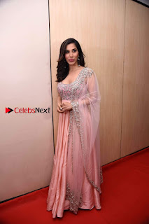 Bollywood Actress Model Sophie Choudry Stills in a Beautiful Dress at The Annual Central Excise Day Celetion  0014.jpg