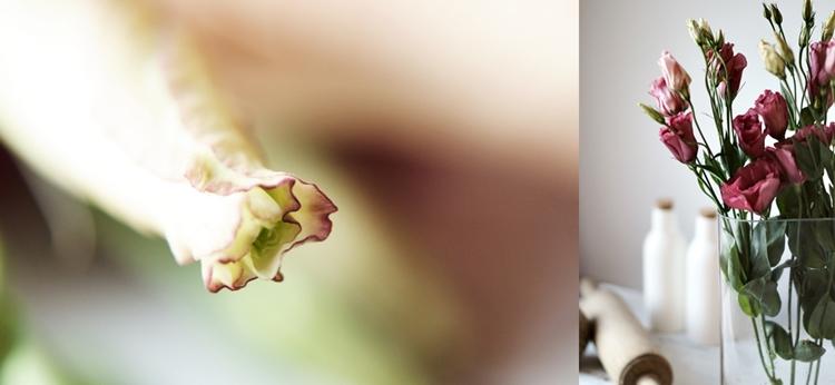 Collage einer Blütenknospe und beerenfarbenen Schnittblumen { by it's me! }