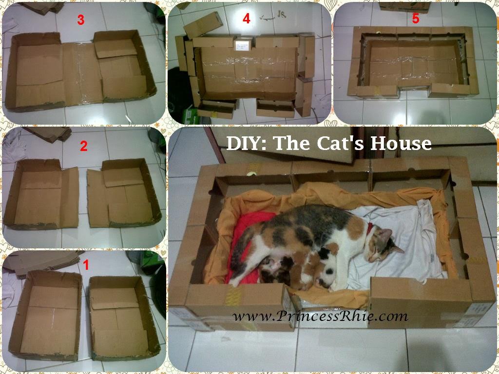 Tempat Tidur Kucing Sederhana   Interior Rumah