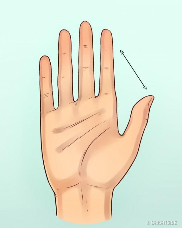 Xem tướng hình bàn tay và ngón tay đoán tính cách con người