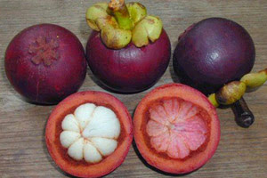 lalloux le superfruit mangoustan. Black Bedroom Furniture Sets. Home Design Ideas