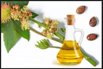 propiedades del aceite de ricino para la salud