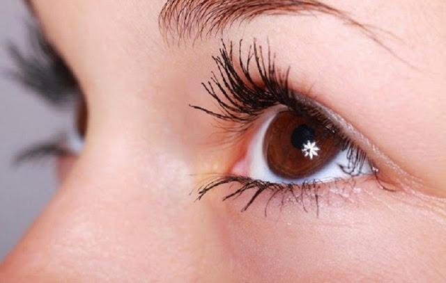 Tips Membuat Bulu Mata Lentik Dan Cantik Dengan Minyak Zaitun