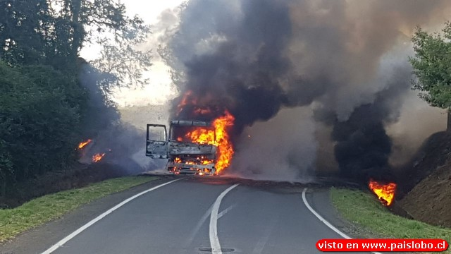 Vídeo | Fuego destruye camión con fardos en Osorno