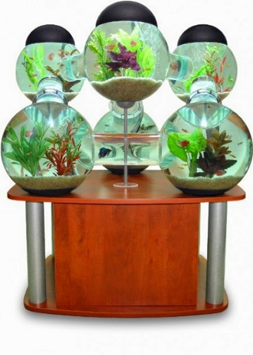 02-Labyrinth-Maze-Aquarium-Fish-Tank-Opulentitems-www-designstack-co