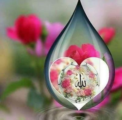 jumma mubarak dp for whatsapp  jumma mubarak dp images  jumma mubarak dps  jumma mubarak dp download  jumma mubarak images for whatsapp dp  jumma mubarak 2018  jumma mubarak dpz  jumma mubarak pictures