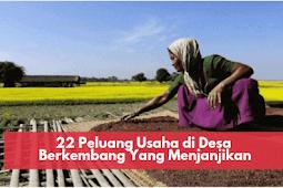 22 Peluang Usaha di Desa Berkembang Yang Menjanjikan