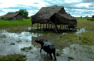 Iklim di Negara Kamboja