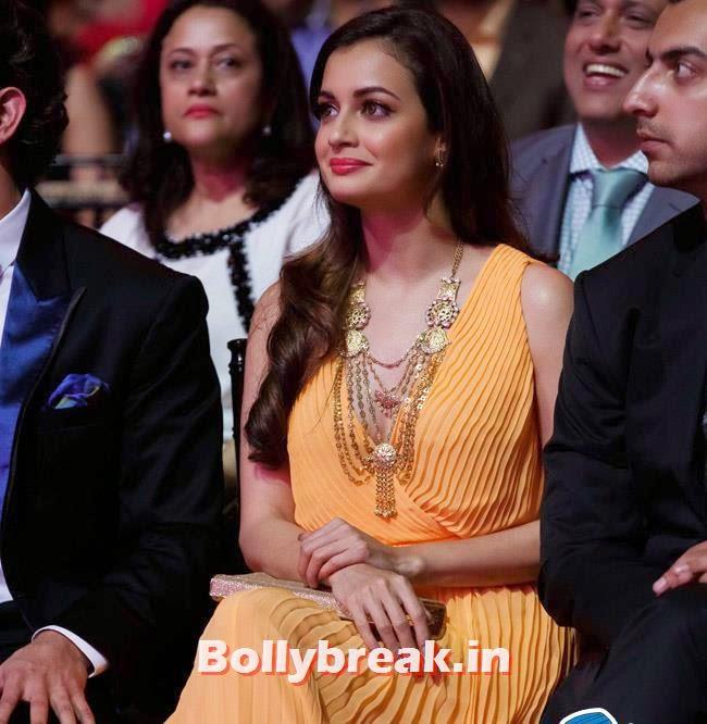 Dia Mirza, IIFA Awards 2014 Pics