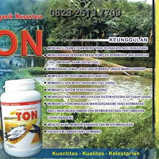 www.agenpupuksupernasa.com