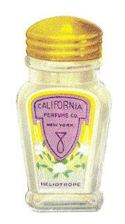 beauty image perfume illustration download