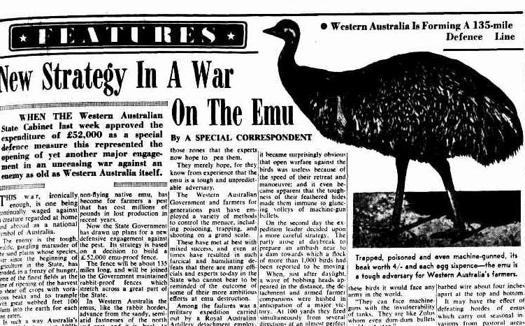 lewis twiby s history and geek stuff history in focus the emu war