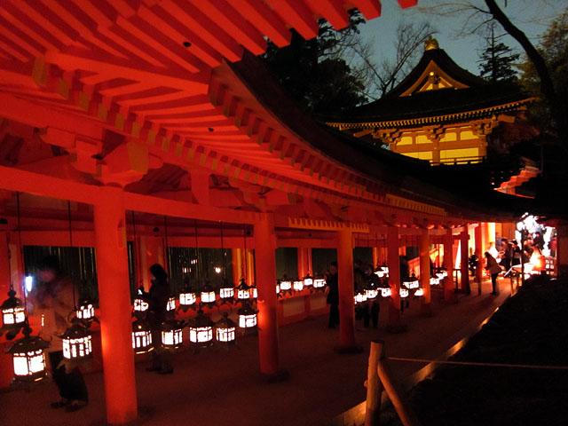 Nara Rurie (Winter Illumination Festival), Nara Pref.