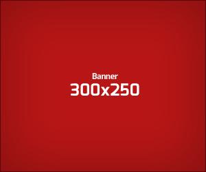 ads300x250
