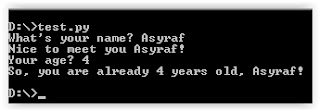 raw_input and input python