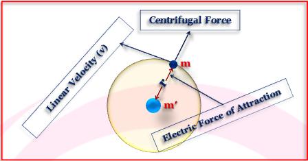 Radii of Bohr Orbit