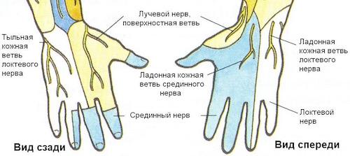 Повреждение срединного и локтевого нерва (Туннельный синдром)