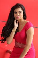 Priyanka Exposing Stills
