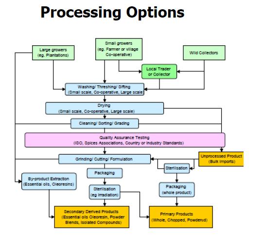 Empresa de opciones binarias con sede en estados unidos