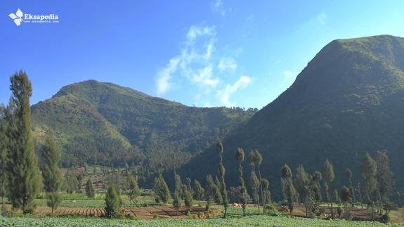 Pemandangan Gunung Pakuwojo