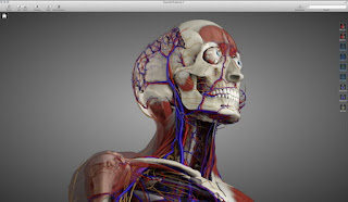aplikasi belajar anatomi