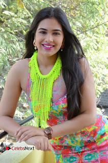 Telugu Actress Prasanna Stills in Short Dress at Inkenti Nuvve Cheppu Press Meet Stills  0109.JPG