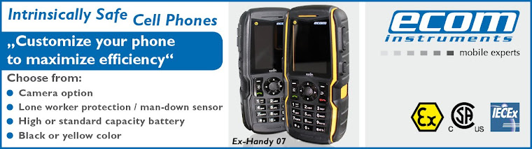 Intrinsically Safe Solutions