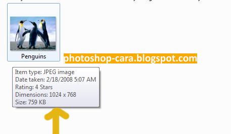 Cara Memperkecil Ukuran Foto dengan Photoshop