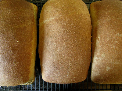 three loaves of homemade bread